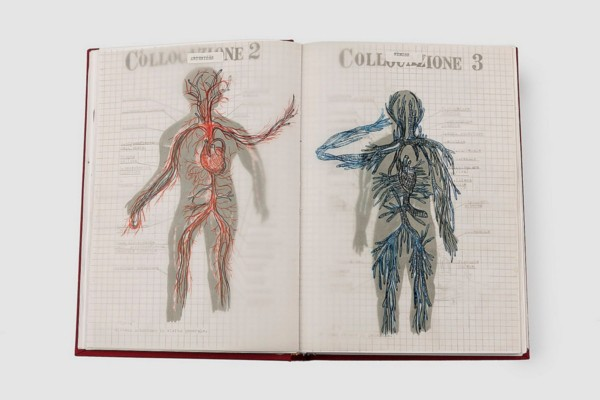 Anatomia Parallela I, 1999/2015, artists' book, mixed media, (100 pages), cm 24 x 35, ed. 5 + 1 (handmade)