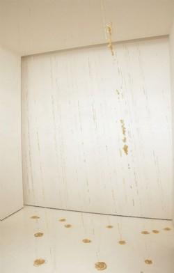 Showers, 2002-2008, installation, rice, monofilaments, ed. 3