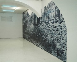 Blue Parrot Canyon, 2013, wallpaper, cyanotype on self adhesive vinyl, dimensions variable, ed. 5 + 1 AP
