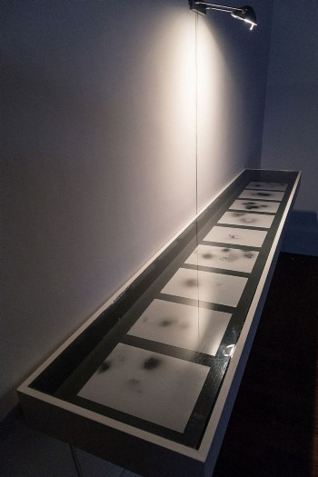 Lenin's Lamp Glows in the Peasant's Hut, 2011, vitrine (steel, glass and wood) with 9 radiographs, cm 90 x 207 x 38, ed. 5 + 2 A.P.