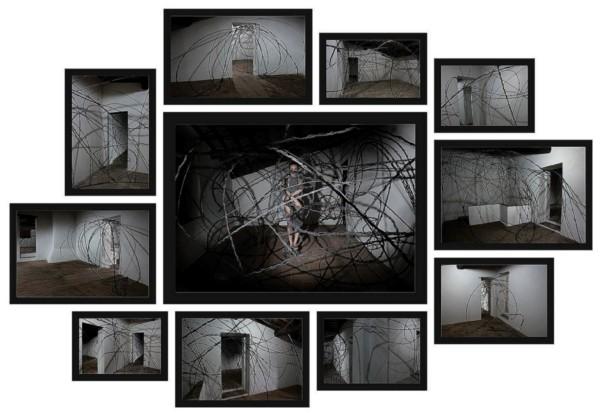 Voliare, 2009, installation, 11 elements, photo: Ela Bialkowska