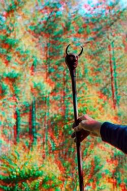 Ernst walking stick at Bob's place., 2015, anaglyph, cm 60 x 40, ed. 3 + 2 AP